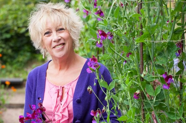 Carol Klein gardener broadcaster at Great British Speakers